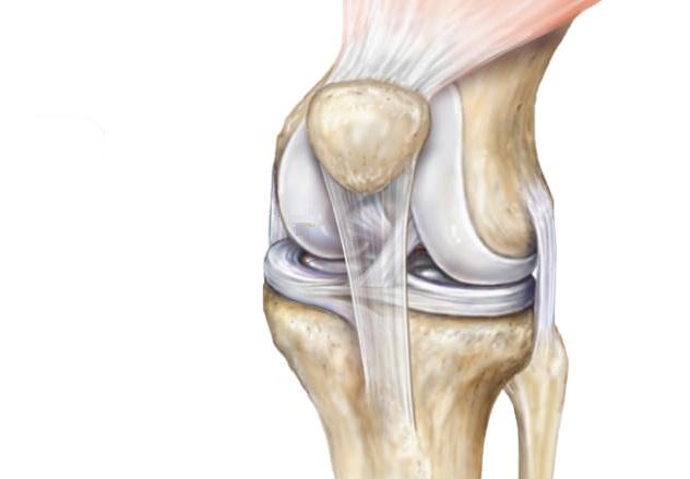 lesao cartilagem joelho