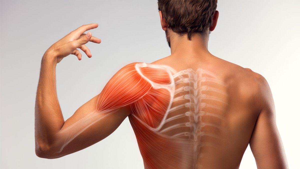tratamento dor ombro cotovelo pulso